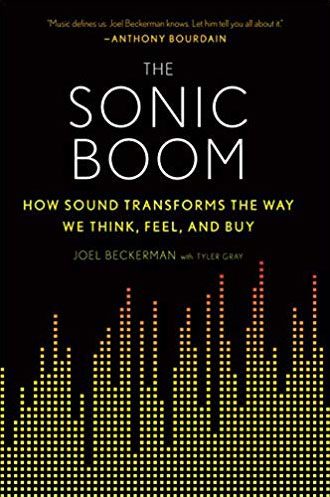 the sonic boom book cover